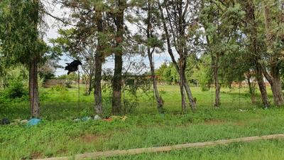 Vacant Land / Plot For Sale in Mlungisi, Mlungisi